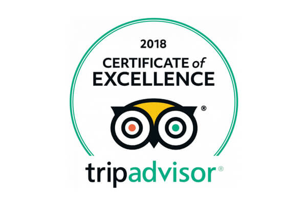 Tripadvisor logo for excellence meghavi wellness